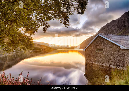 View of Llyn Ogwen Lake at sunrise with blu sky. House in the lake and tree. - Stock Photo