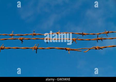 Three sunlit strands of rusty barbed wire againsta blue sky focus on the nearest - Stock Photo