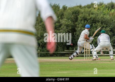 a village cricket match pdf