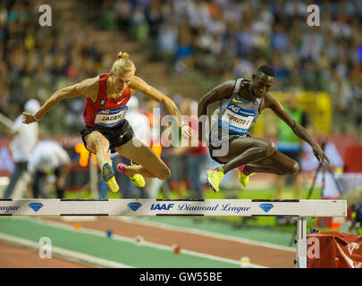BRUSSELS, BELGIUM - SEPTEMBER 9: Evan Jager   Conseslus Kipruto competing in the men's 3000m Steeplechase at the - Stock Photo