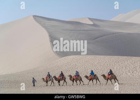 Camel Caravan in the Gobi Desert - Stock Photo