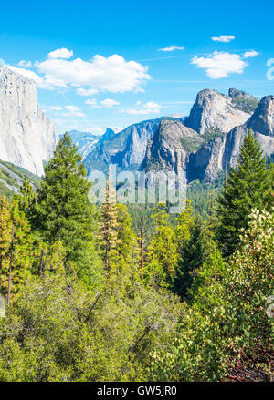 Yosemite National Park, California, panoramic view of the valley with the El Capitan and the Cathedral Spires mountains - Stock Photo