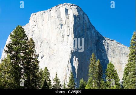 Yosemite National Park, California, the white El capitan mountain - Stock Photo