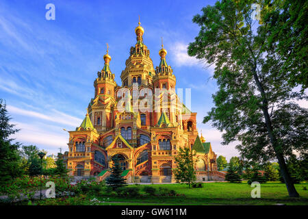 St Peter and Paul cathedral is a traditional russian orthodox church, Peterhof, St Petersburg, Russia - Stock Photo