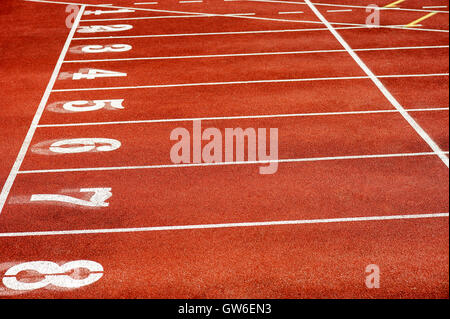 Eight runner tracks in a sport stadium - Stock Photo