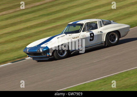 Chichester, UK, UK. 11th Sep, 2016. The RAC TT Celebration race for 1960's sports cars during the Goodwood Revival - Stock Photo