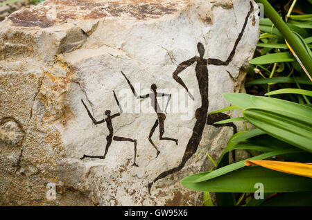 Rock images featuring ancient tribes people called Khoikhoi shown in the Welsh Botanic gardens Great Glasshouse - Stock Photo