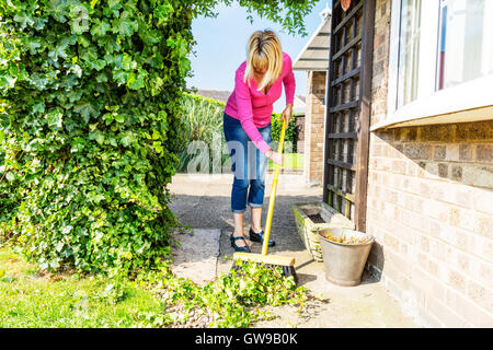 sweeping up mess broom brushing sweep gardening gardener hedge cuttings UK England GB - Stock Photo