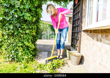 sweeping up mess broom brushing sweep gardening gardener hedge cuttings UK England GB clearing - Stock Photo