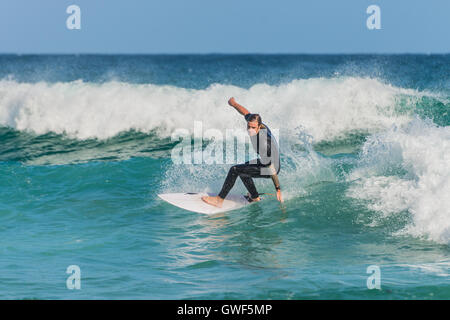A Australian surfer on the wave, Bondi Beach in the Eastern Suburbs Sydney - Stock Photo