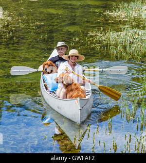 Couple share canoe with retrievers in Twin Lakes in the Mammoth Lakes Basin - Stock Photo