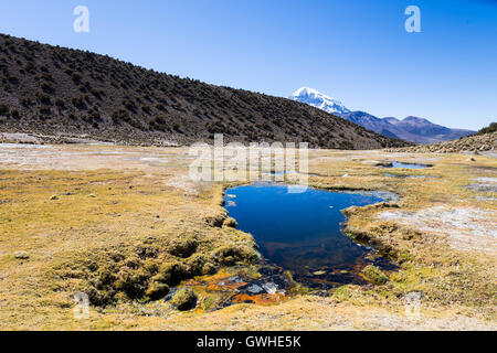Andean geysers. Junthuma geysers, formed by geothermal activity. Bolivia. The thermal pools allow a healthy and - Stock Photo
