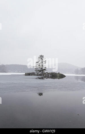 Beautiful view of the frozen forest lake in the winter. - Stock Photo