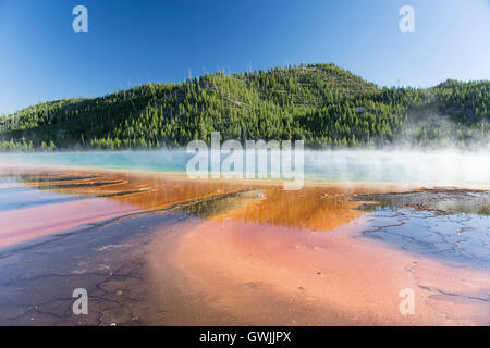 Grand Prismatic Spring in Midway Geyser Basin, with steam and reflections. Yellowstone National Park, Wyoming, United - Stock Photo