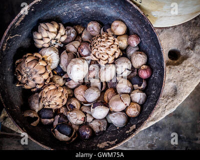 Old artichokes and nuts in a wooden bowl on a farm in the Eastern Cape province of South Africa - Stock Photo