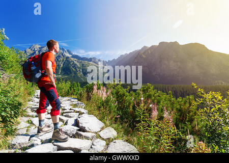 Man standing on the path, looking at mountains - Stock Photo