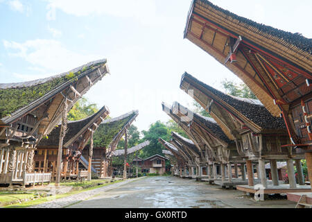 Tongkonan houses, traditional Torajan buildings and house located at Ke'Te Kesu - Stock Photo