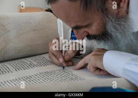 Neria, Israel. 15th September, 2016. A scrivener finishes to write the Torah scroll (Bible), containing the Pentatuch, - Stock Photo