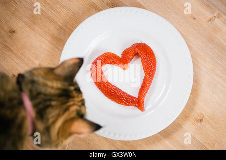 Red caviar in the shape of  heart on a plate and curious cat. - Stock Photo