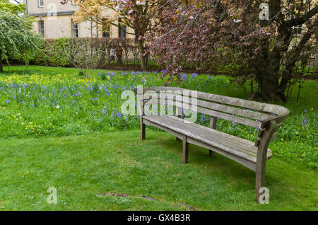 Empty wooden bench in the grounds of Merton College, Oxford, UK - Stock Photo