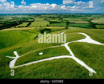 Head & eye of dragon-like Uffington White Horse chalk figure carved on the hillside above the flat-topped mound - Stock Photo