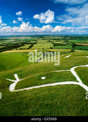 Head & eye of the dragon-like Uffington White Horse chalk figure carved on the hillside above the flat-topped mound - Stock Photo