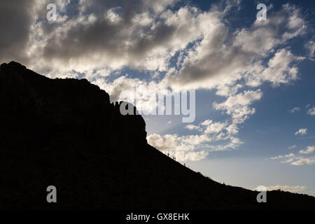 Desert mountains and saguaro cactus silhouetted against a partly cloudy sky in late afternoon light. Gila River - Stock Photo