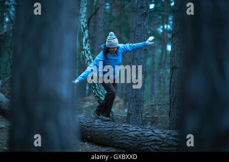 Female hiker balancing on fallen tree in forest - Stock Photo