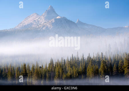 Mist surrounding the forest below Unicorn Peak, Yosemite National Park, California, USA. Autumn (October) 2014. - Stock Photo