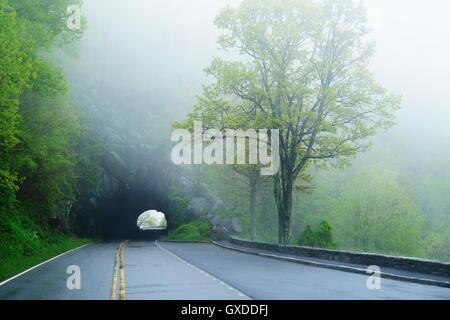 Tunnel on misty empty road, Shenandoah National Park, Virginia, USA - Stock Photo