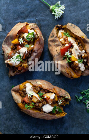 Sweet potatoes with spicy lentils, yellow pepper and tomato filling, thyme, garlic flowers and chipotle sour cream - Stock Photo