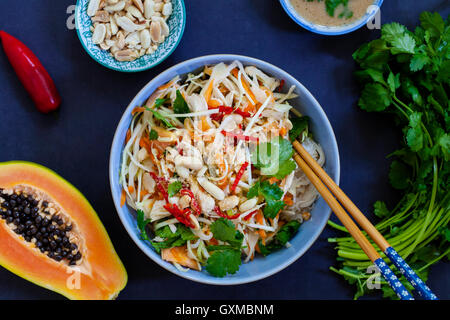 Poached chicken, cabbage and papaya salad with rice noodles and coriander - Stock Photo