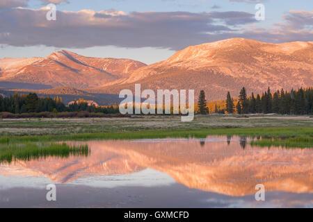 Tuolumne Meadows at sunset, Yosemite National Park, California, USA. Spring (June) 2015. - Stock Photo