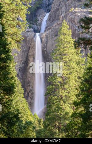 Lower Yosemite Falls in Yosemite Valley, Califorinia, USA. Spring (June) 2015. - Stock Photo