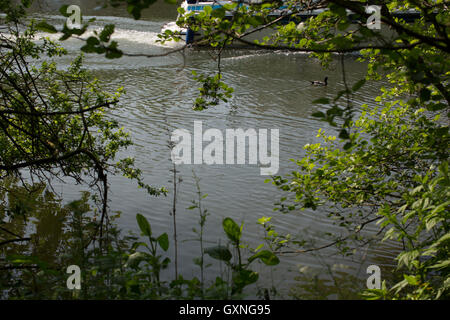 A small motor boat sailign on the river thames at Abingdon in OXfordshire, UK. - Stock Photo