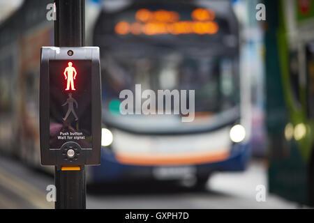 bus pedestrian crossing red man stop   bus queue line queuing  Bus buses stopped double decker fleet coach company - Stock Photo