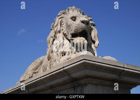 Statue of a lion on the Pest side of the Chain Bridge, which crosses the Danube, Budapest, Hungary - Stock Photo