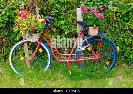 Fahrrad, Blumen, Ruegen. - Stock Photo