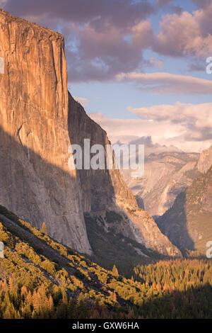 The enormous face of El Capitan towering above Yosemite Valley, California, USA. Autumn (October) 2015. - Stock Photo