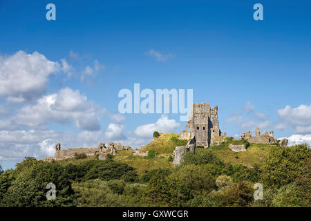 Castle dating back to the 11th Century situated in a gap in the Purbeck Hills - Stock Photo
