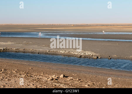 Saltpans, Walvis Bay, Namibia,  August 2016 - Stock Photo