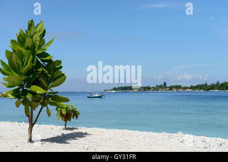 Gilli Meno, Indonesia - Stock Photo