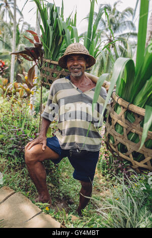 Full length shot of happy old man carrying seedlings on his shoulders. Senior farmer standing in his farm. - Stock Photo