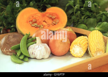 Common Vegetables - Stock Photo
