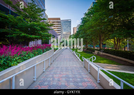Gardens along a walkway at Freedom Park and modern buildings in ...
