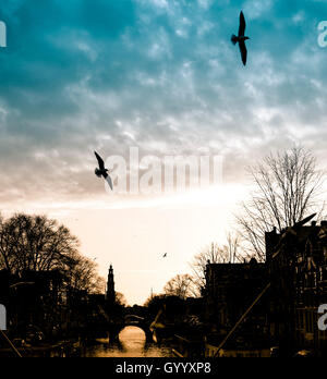 Canal with silhouette of church Westerkerk and birds in flight at sunset, Amsterdam, The Netherlands - Stock Photo