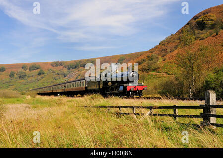 Steam train hauled by GWR loco No 7822 'Foxcote Manor' passing through Newtondale on the North Yorkshire Moors Railway. - Stock Photo