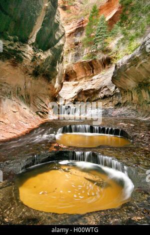 Subway Permits, USA, Utah, Zion Nationalpark   Subway Permits, USA, Utah, Zion National Park   BLWS429886.jpg [ - Stock Photo