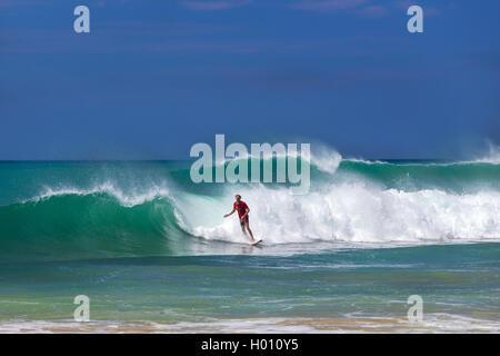 HIKKADUWA, SRI LANKA - FEBRUARY 24, 2014: Surfer riding a wave on Hikkaduwa beach, well known tourist international destination