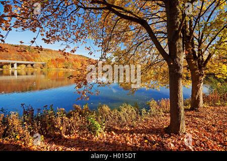 Seilersee in autumn, , Germany, North Rhine-Westphalia, Sauerland, Iserlohn - Stock Photo
